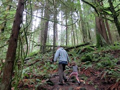 The littlest hiker (Ruth and Dave) Tags: green dave moss rainforest hiking path father daughter ferns atmospheric tees catrin striding cypressfalls