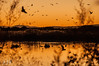 Bye bye 2013 (Sánchez Huelves) Tags: sunset sky españa seascape reflection luz nature atardecer spain nikon solitude paisaje cielo theworldwelivein nikonflickraward vividstriking