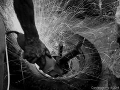 Las manos de mi padre trabajando - The hands of my father working (Danferpizarro) Tags: chile bw white black flores color blanco luz canon de point la coquimbo calle shot y monumento negro bicicleta bn iso perro cruz gato vida caminar balance animales juego region iv siempre por recuerdos blancos exposicin ahp compacta sx160 danferpizarro