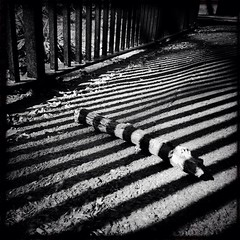 Diversion (Rob Pearson-Wright) Tags: street wood uk light blackandwhite bw london shadows path walk candid streetphotography streetlife ground stick hipstamatic uploaded:by=flickrmobile flickriosapp:filter=nofilter vision:outdoor=0711