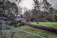 It go Boom (Texas Exposur) Tags: storm rain texas v slt a77 straightlinewinds alazan garagesony