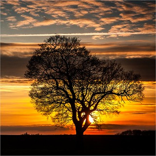 Alternative sunset picture