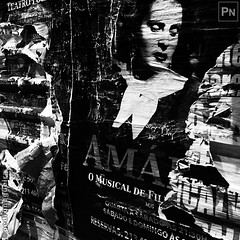 Amália (Pedro Nogueira Photography) Tags: pedronogueira pedronogueiraphotography photography iphone5 iphoneography portugal blackandwhite monochrome outdoor streetphotography