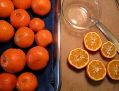 Seville Oranges (robertlambertbrand) Tags: robertlambert marmalade yuzu whitegrapefruit sevilleoranges grapefruit oranges poormanorange poorman pommelo orovalmandarin mandarin oroval kinkojipommelohybrid kinkoji kaffirlimes kaffir limes rangpurlimes rangpur genelesterranch sacatoncitrumelo sacaton citrumelo bloodorange