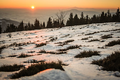Island Beskids - A view from Ćwilin to Luboń Wielki and Babia Góra (Karol Majewski) Tags: góry mountains landscape krajobraz winter zima śnieg snow evening sunset zachód poland polska carpathians karpaty wander wanderlust trees woods forest las hills drzewa lubońwielki babiagóra babia góra ćwilin beskidwyspowy islandbeskids