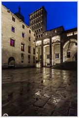 """""""Plaza del Rey"""" (Gerkraus) Tags: largaexposicion barcelona horaazul barriogotico arquitectura cataluña spain bluehour besosyabrazos"""
