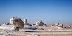 Head - White Desert, Egypt (pas le matin) Tags: desert sahara head tête stone limestone sandstone world travel voyage paysage landscape sand sable pierre ciel sky dry sec egypte egypt africa afrique canon 7d canon7d canoneos7d eos7d