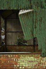DSC_1778 [ps] - Hang On (Anyhoo) Tags: anyhoo photobyanyhoo guildford surrey england uk winter farm tytingfarm decay abadonded damaged corrugated corrugatediron wrigglytin lichen mossy algae stained old worn battere