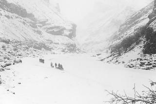 Snowy Day Migration