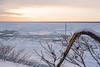 冬の知床 01 (tomomega) Tags: 知床 北海道 日本 japan 流氷 driftice 雪 snow
