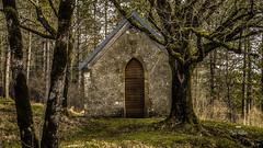 Vois sur ton chemin... Voix sur mon chemin ! (Fred&rique) Tags: lumixfz1000 photoshop raw hdr chapelle privée propriété fermée nature paysage arbres jura hiver