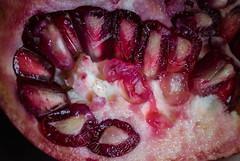 Seeds & Pulp (PhilR1000) Tags: seeds pomegranate fruit red macro macromondays memberschoiceseeds anardana