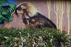 Gypaède Barbu dans son nid (HBA_JIJO) Tags: streetart urban graffiti vitry vitrysurseine animal art france hbajijo wall mur painting aerosol oiseau peinture bird paris94 spray mural bombing urbain atomludik
