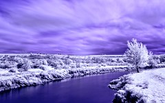 South Stoke IR (hall1705) Tags: southstokeir infrared serene landacape d3200 outdoor river riverarun trees field longexposure purple white