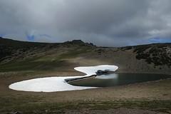 Frozen Lake (Sean Munson) Tags: washington hiking nationalpark mountrainiernationalpark frozenlake water trail landscape