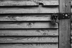 Shed Door (Cheekybikerboy) Tags: bw monochrome wood grain details shed door locks heart padlocks