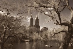 A row in the park (8230This&That) Tags: centralpark manhattan nyc newyorkcity rowboats newyork unitedstates us old time nostalgic bronze pond