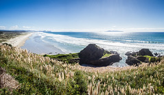 Te Arai Point panorama (loveexploring) Tags: breamhead breamtail henandchickenislands newzealand northland pacificocean pampasgrass tearai tearaibeach tearaipoint beach coast coastline landscape ocean panorama sea seascape sun surf surfing