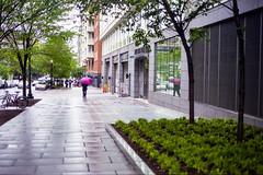 img820 (markczerner) Tags: washington dc washingtondc street streetphotography rain rainyday rainy nikon nikonfa filmphotography fuji fujifilm pro400h 400h filmisnotdead umbrella wet metro district