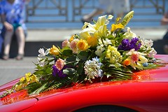 Car Flowers (swong95765) Tags: flowers car beautiful gorgeous wonderful festive parade floral hood red vehicle