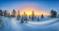 Sunrise and seafog (M.T.L Photography) Tags: landscape panorama winter sea ice sunrise nordic finland mikkoleinonen mtlphotography sky snow nikond810 nikkor1424 trees