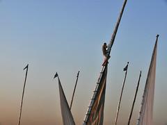 Felouque Egyptienne. (julien ( l'ours )) Tags: panasonic dmc fz50 egypte felouque egyptian felucca egypt sunset coucher soleil voile sail nil nile escalade mat bateau boat