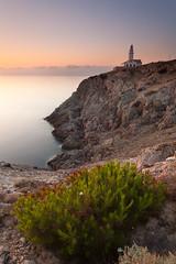 The Lighthouse (Lars Øverbø) Tags: mallorca calarajada spain lighthouse evening travel plant sea ocean rock mountain sunrise morning canonef1740mmf4lusm canoneos5dmarkii leendgrad