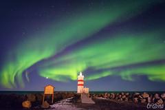 Aurora Boreale 5 (Crisbina) Tags: islanda reykjavík snow sea ocean neve ghiaccio ice panorama landscape natura nature fire fuoco acqua terra aria birds auroraboreale northerlighs uccelli scogliera
