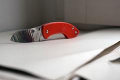 Blade Finish (Lup0s) Tags: spyderco pingo pocketknife anso voxnaes cutlery orange colourful allcoloursarebeautiful