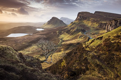The Trotternish Tree (Dave Fieldhouse Photography) Tags: trotternish trotternishridge tree skye isleofskye scotland highlands march2017 sunrise morning dawn landscape iconic cliché fuji fujixt2 fujifilm landslide outdoors epic loch dundubh cleat cliff clifftop weather wwwdavefieldhousephotographycom