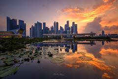 Fiery Sunset 16.04.2017 (Martin Yon) Tags: martinyon singapore sunset mbs asm marina bay sands art museum fiery