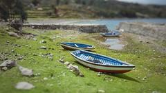 Miniature rowing (Boslok) Tags: peru travel travelphotography boats tiltshift shore sunny island titicaca lake grass green blue miniature blur samsung s6edge s6 ontheroad hitchhiking smartphone smartography boslok amantaní