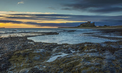 Bamburgh Dawn. (david newbegin) Tags: bamburgh bamburghcastle dawn northeastengland northumberland northsea rocks castles