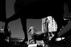 From High Upon St Marks (leftyguk) Tags: venice canonefs24mmstm canon760d blackandwhite stmarksbasillcaroof stmarks silhouette horses