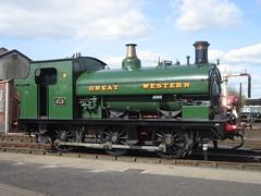 IMG_4816 - GWR Hudswell Clarke Saddle Tank 813 (SVREnthusiast) Tags: didcotrailwaycentre didcot railway centre gwrhudswellclarkesaddletank813 gwr hudswellclarke saddletank 813