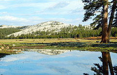 Tuolumne Meadows Reflection, Yosemite 2015 (inkknife_2000 (7.5 million views +)) Tags: easternsierranevadas yosemitenationalpark california usa landscapes mountains dgrahamphoto creek mountainpond rocks waterreflections calmwater fallentree reflectiononwater tuolumnemeadows granitedomes skyandclouds