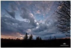 APRIL  2017-021108-22 (Nick and Karen Munroe) Tags: raindrops rainclouds clouds cloud sky lands landscape sunburst sunrise daybreak daylight darksky brampton beauty beautiful brilliant blue ontario outdoors canada colour color nikon nickandkarenmunroe nickmunroe nature nikond750 nikon1424f28 nickandkaren karenick23 karenick karenandnickmunroe karenmunroe karenandnick munroedesignsphotography munroedesigns munroephotography munroe storm weather weatherevent