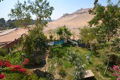 DSC_0115 (laura k wmtc) Tags: egypt luxor westbank