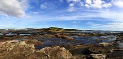 reef LR iphone7 plus IMG_8451_tonemapped (neilfif11) Tags: iphone7plus panorama sydney longreef reef