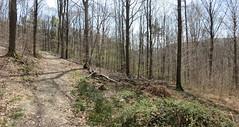 IMG_4370_4371 (Bike and hiker) Tags: ourthe aisne printemps lente
