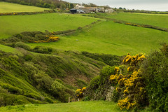 DSC_0221 (shieladixon) Tags: walking nature unspoiled coast bluesky wales coastal path welsh