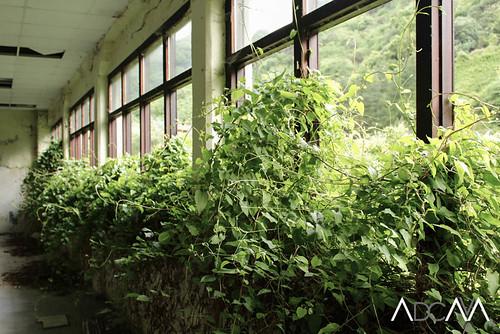 Sanatorio de Bustiello