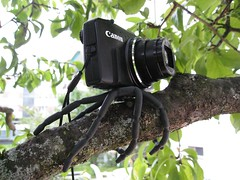 Breffo Adventure Camera Kit (collideous) Tags: camera adventure kit replay spiderpod breffo xd1080