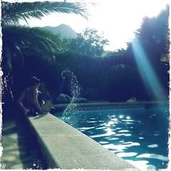 Mermaid (Helldorado Berlin) Tags: blue water pool fashion palms spain ray rubber latex mallorca sunbeam sunray rayoflight balearic pollenca hipstamatic kodotxgrizzledfilm americanalens americanalinse