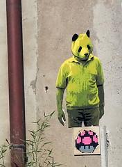 pandaLyon2 (Tuco#) Tags: street art stencil panda pochoir tuco woodshape