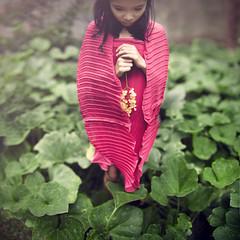 pierce the veil part 2 (aya_positivity) Tags: pink nature kid veil dress concept conceptual expansion