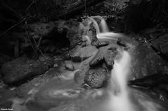 Cascadelle et  tuf sur le  ruisseau du Creux Lague - Blegny (francky25) Tags: white black noir du jura le sur et blanc franchecomté tuf ruisseau creux blegny lague cascadelle