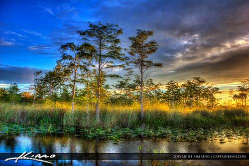 sunset florida wetlands cypresstree palmbeachgardens palmbeachcounty photomatixpro hdrphotography highdyanmicrange topazsoftware captainkimo loxahatcheeslough