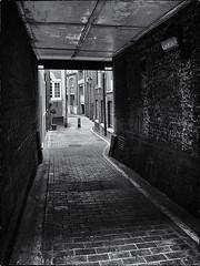 CLARGES MEWS 1 (Nigel Bewley) Tags: street uk england blackandwhite london blackwhite secret august cobbles mayfair mews londonstreets londonist hiddenlondon unlimitedphotos clargesmews august2013 canong1x