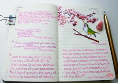 """This Day "" !!! : ) (Milagritos9) Tags: flowers tree peachtree birdportrait mily birdillustration journalhandwriting sanskritpoem birdjournal inspirationaljournal milycha diarioilustrado pájaroillustración dreamsjournal moleskineartpages todybird milagritosflores birddiary2013 birddiarymoleskine lipopoem chineseproverbillustration taoistpoem thisdaypoem estedíapoesía"